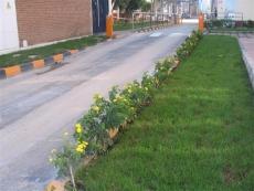 jardines-04